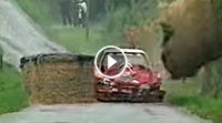 Video Crash Sebastien Loeb (Citroen Xsara)